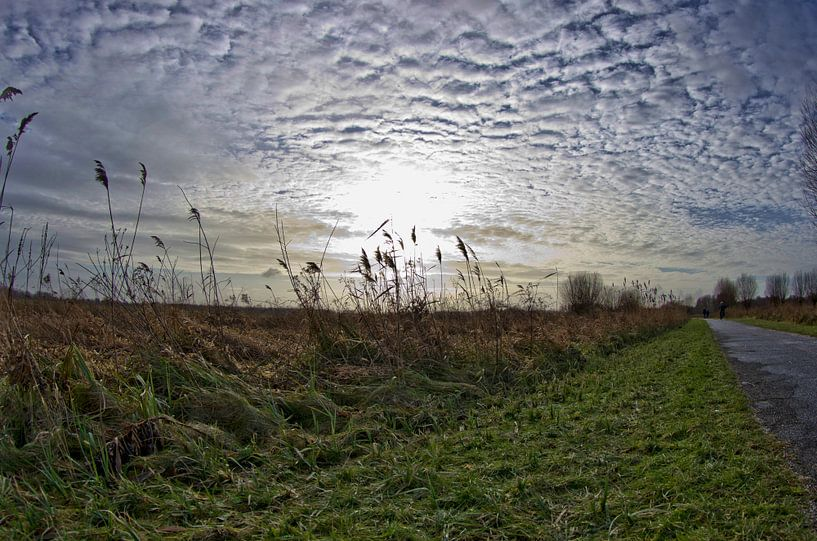 Stormy Weather van Wouter Kok