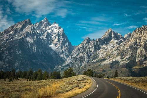 Grand Teton van