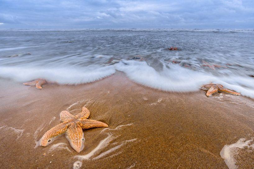 Star Beach van Richard Guijt Photography