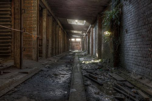 Koelhallen in een verlaten baksteenfabriek (Urbex) van Eus Driessen