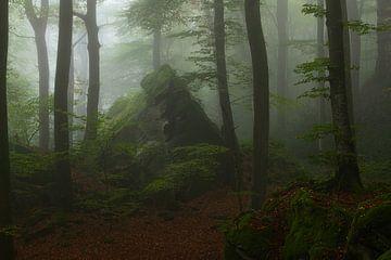Een mooie sfeervolle mistige ochtend in het Mullerthal in Luxemburg. van Jos Pannekoek