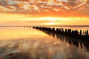 Oranje zonsondergang van rik janse