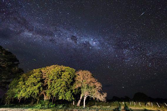 Melkweg Pantanal  van Leon Doorn