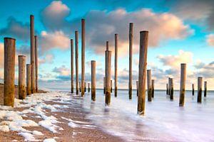 Palendorp bij Petten aan Zee van