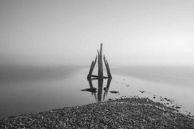 Mistige morgen Den Osse van Sonny Vermeer