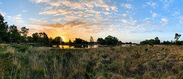 Kiezelven op Strabrechtse Heide in Heeze van Jacky Keeris