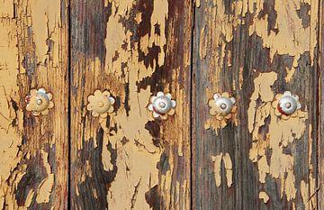 Oude deur met bloemen. van Jan Katuin