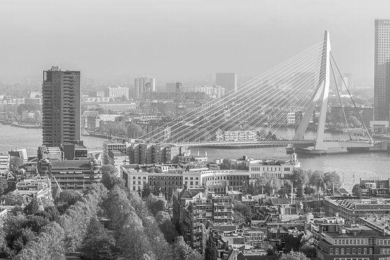 Rotterdam Skyline van Sander Monster