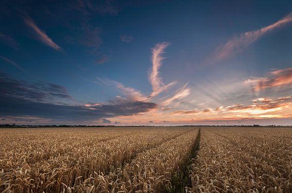 Zonsondergang boven het Graanveld