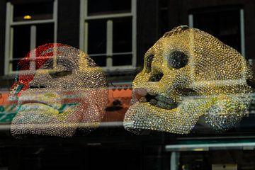 diamaten Skulls van Brandon Lee Bouwman