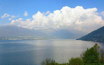 Seeblick - Lago Maggiore von Gisela Scheffbuch