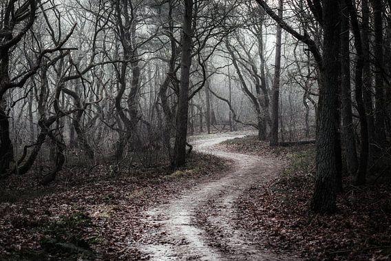 Fürchte kein Böses von Tvurk Photography