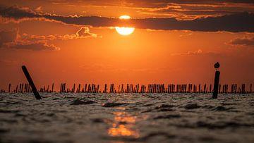 Sonnenuntergang im Wattenmeer mit einem Vogel auf einer Stange :) von Martijn van Dellen