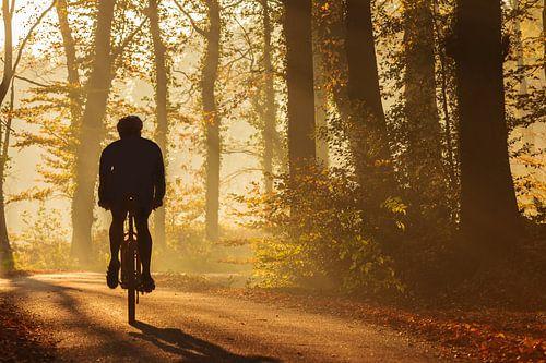 Mountainbiker in de herfst van