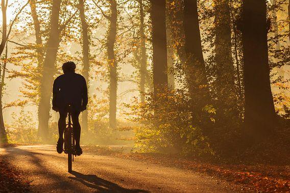 Mountainbiker in de herfst van Martin Bergsma