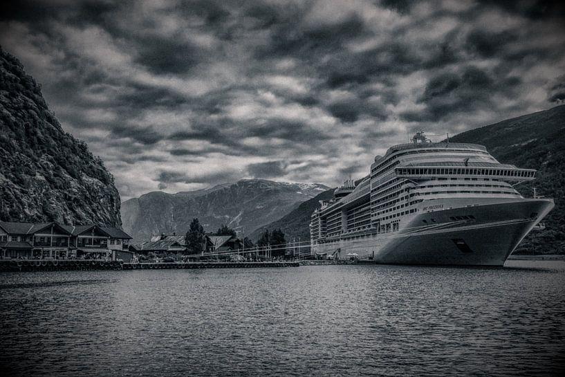 Cruise in Noorse fjord van Wim Scholte