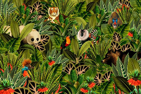 Jungle met panda, toekan, paradijsvogel, beer, tijger en apen.