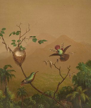 Brasilianische Kolibris IV, Martin Johnson Heade