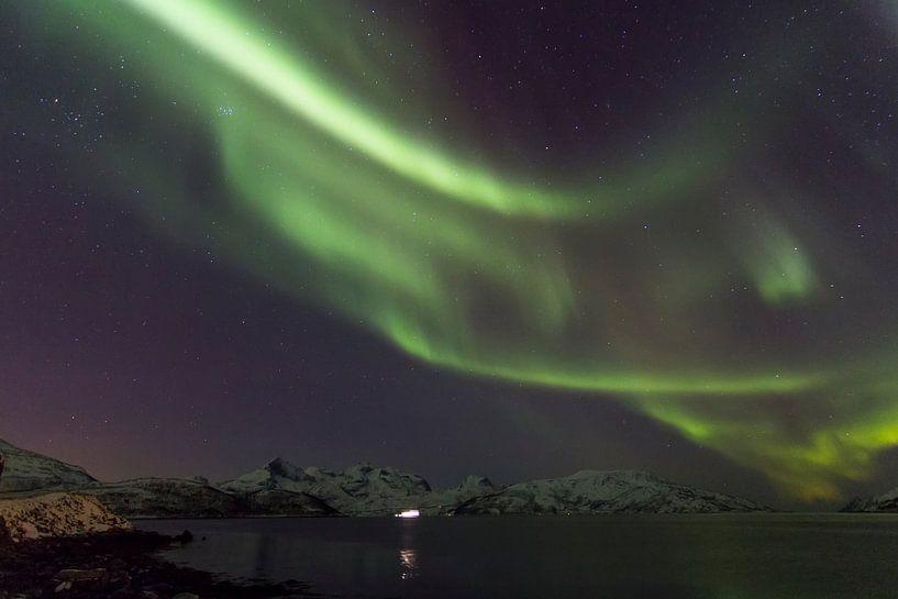 Northern Lights, Skulsfjord van Freek van den Driesschen