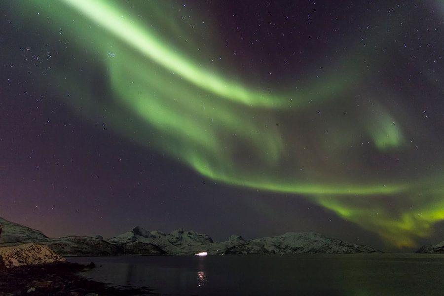 Northern Lights, Skulsfjord