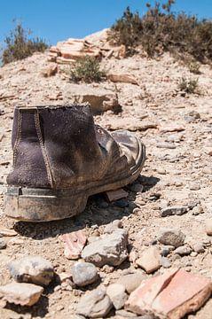 Verloren Schoen von Lieke Roodbol