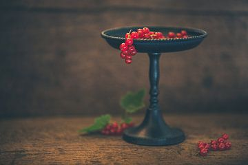 Rode bessen van Regina Steudte | photoGina