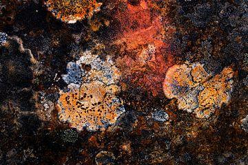 Abstracte rots van Jan Tuns