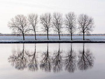 Mirror mirror van Mattijs Diepraam