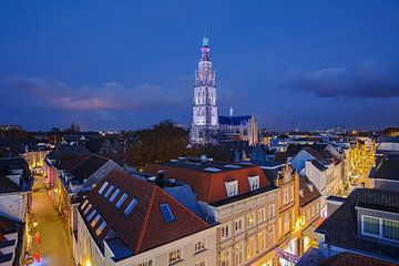 Grote Kerk Breda in zilverkleurig licht sur