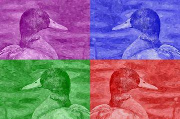 Eend in vier kleuren van Leo Huijzer