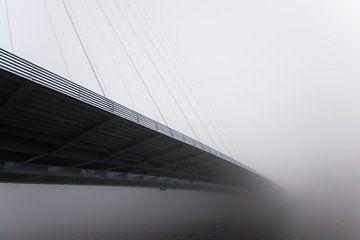 Neverending Mist van Rene Romijn