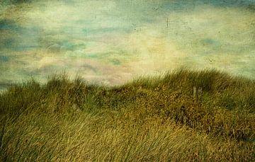 Der Wind und das Meer von Claudia Moeckel