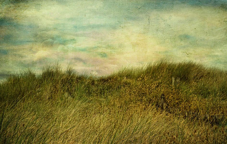 Der Wind und das Meer van Claudia Moeckel