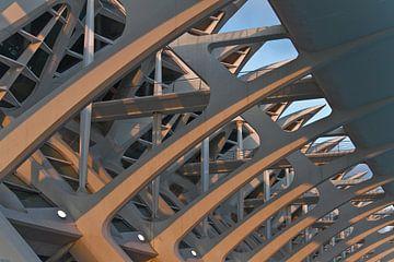 Valencia by Calatrava  sur Dave Lans