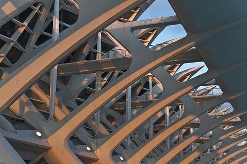 Valencia by Calatrava  van