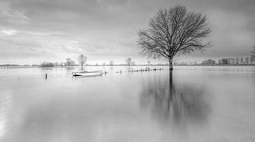 Hochwasser von Hans van der Grient