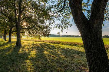 Herfstkleuren von Moetwil en van Dijk - Fotografie