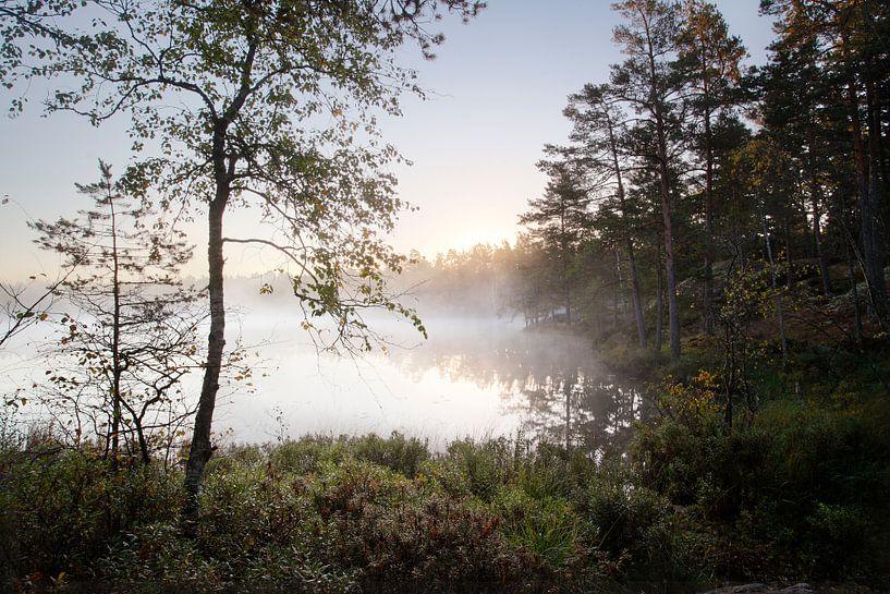 Zweedse ochtend van Mark Leeman