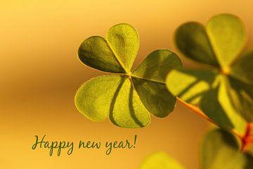 Neujahrswünsche von Heike Hultsch