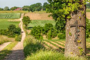 Boomkruis met landweg in Zuid-Limburg van
