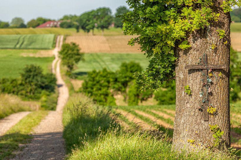 Boomkruis met landweg in Zuid-Limburg van John Kreukniet