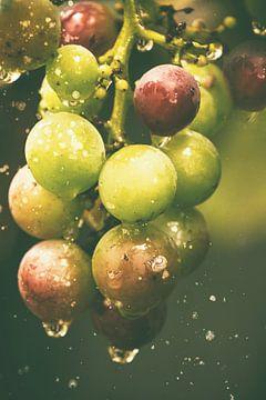 sprankelende druppels -  druiven van Christine Nöhmeier