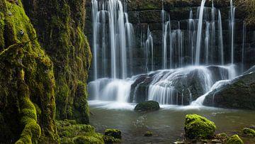 Mos en water van Denis Feiner