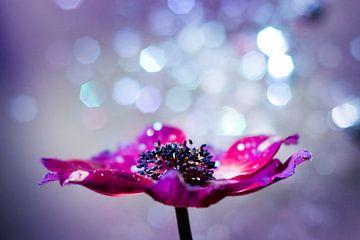 Magische bloem met glitter bokeh van Evelien Oerlemans