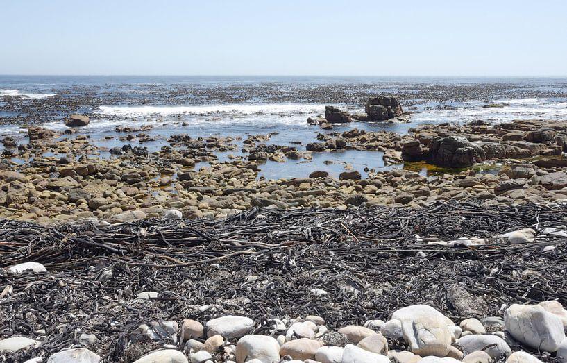 Kust Kaapstad van Liesbeth Govers voor omdewest.com