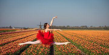 Ballerina sprong van Peter Heins