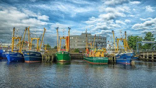 Den Helder harbour vissersboten