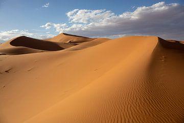 Gouden duinen van Erg Chebbi dichtbij Merzouga in Marokko, Afrika van Tjeerd Kruse