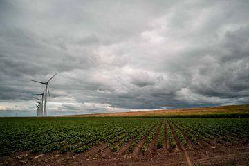 Dunkle Wolken über einem Graben und einer Weide in den Niederlanden von Jolien Kramer
