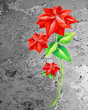 Flower seven van PictureWork - Digital artist